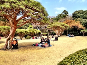 People enjoying a pick nick at Shinjuku gyoen