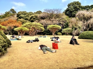 People enjoying the first rays of spring sun at Shinjuku gyoen park