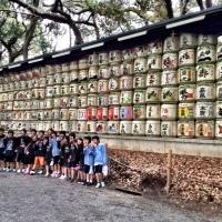 Desperately seeking sake, where to buy Nihonshu in Tokyo
