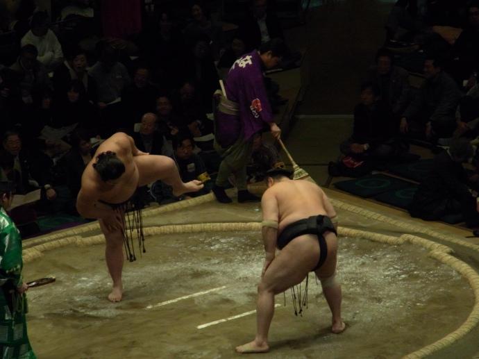 Sumo is a bit like dancing