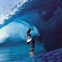 Surfing in Tokyo