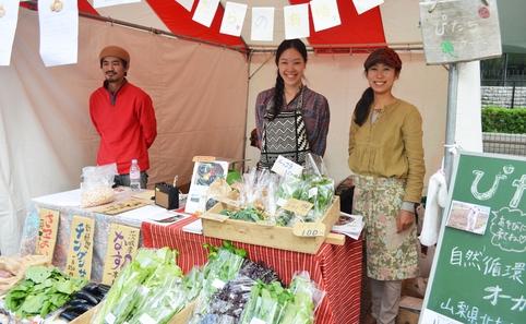 Tokyo vegafood festa 2013